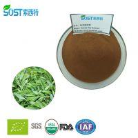 绿茶提取物 陕西 茶多酚 西安索西特生物 厂家长期供应 绿茶提取物/价格