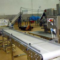 德州强盛机械厂制作不锈钢 皮带式提升输送机 裙边皮带机