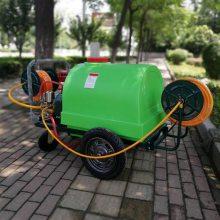 厂家直销蔬菜基地喷雾器草坪绿植杀虫打药机300L手推小型喷洒机