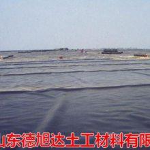 广州单糙面土工膜 虾池防渗膜批发商