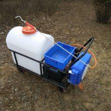 志成供应蓄电池打药机手推式喷雾器园林蔬菜喷雾器