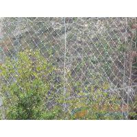 山坡道路被动防护网.被动钢丝网护坡价格.自然灾害防护网
