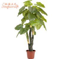 厂家大量供应仿真盆栽 仿真万年青 PU白心万年青小植物
