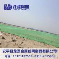 绿色工地防尘网 山西优惠的防尘网 河北盖土网厂家