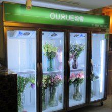 广西定做鲜花柜尺寸哪个牌子价格优惠