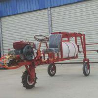 300L手推式汽油打药机 启航三轮自走式喷雾器 果园风送喷药机厂家