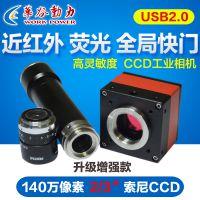 WP-US146 ccd工业摄像机 工业摄像机 工业相机