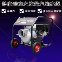 高配置便携式6寸汽油机铸铝泵铃鹿