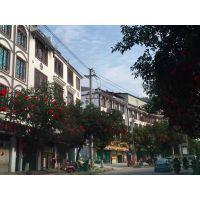 """天津市步行街复古代""""木窗""""铝窗花德普龙为您省钱耐用"""