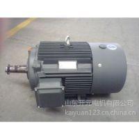 YE2 系列抽油机锥轴专用电机 山东开元