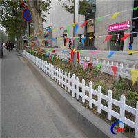 河北昌熙供应优质 PVC草坪护栏 绿化围栏 花坛防护栅栏 可定制