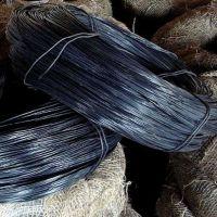 安平供应圆形黑丝价格_镀锌铁丝_黑建筑网片 软丝
