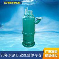 潜水泵价格 矿用防爆潜水泵BQS50-120/2-37/N厂家