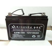 金派克蓄电池6-FM-100/12V100AH阀控式免维护