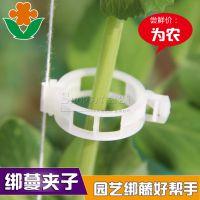 西红柿卡扣 吊蔓夹 固定夹 植物吊秧器