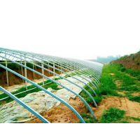 温室大棚管厂家 批发规格4分-1.5寸 恒鑫达温室大棚管材质Q235