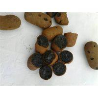 太原陶粒、大同陶粒、长治陶粒厂家供货上门 18855403163 张经理
