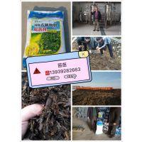 鹤壁市禾盛生物科技有限公司-地下害虫防治菌 13939282663