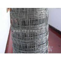 (新疆欧利特)供应高品质草原隔离防护网,镀锌牛栏网,可定制