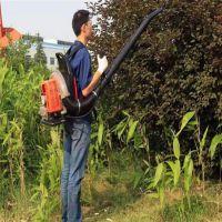 家用便携式吹吸两用一体机 启航森林灭火吹风机 路面清理吹雪机价格
