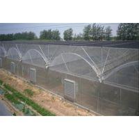 云南文山药材种植大棚温室20000平方、薄膜连栋型工程承接公司