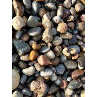 本诺厂家批发精品白色雨花石鹅卵石 鹅卵石滤料
