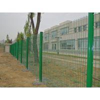 绿色浸塑铁丝网/绿化带隔离网/围墙铁丝网厂家定制生产