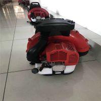 临星9500农用大棚吹雪机 便携式吹雪机 工程专用除尘机