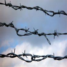 刺绳护栏网价格 刀片刺绳安装 刺线厂