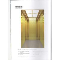 苏州台菱电梯乘客电梯系列永磁同步小机房乘客电梯