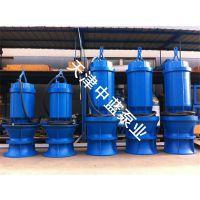泵站改造用潜水轴流泵
