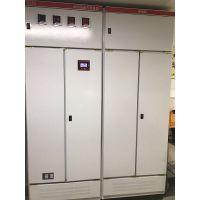EPS-3KWeps应急电源主机电池维修更换