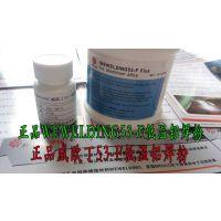 正品威欧丁WEWELDING53-F进口铝焊粉