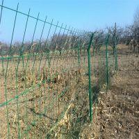 果园绿化带护栏@聚光网栏厂定制双边丝隔离网