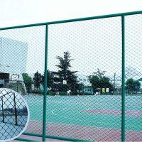 朋英 厂家直销 热镀锌体育场围栏网 浸塑勾花护栏网
