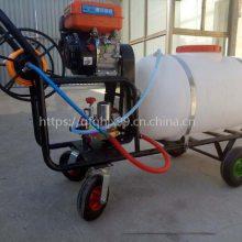 汽油大容量喷雾器 高射程大容量打药机 喷雾器厂家