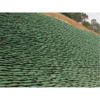 昆明寻甸边坡绿化花草种子资材无纺布出售