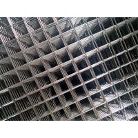 304不锈钢网片 不生锈金属网 隔断防护墙网片 厂家直销