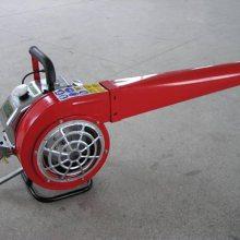 镇江润林6MF-32便携式风力灭火机 大功率风力吹风机 背负式风力吹雪机 手提式风力灭火机