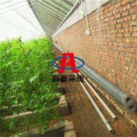 工业翅片管换热器河北工业翅片管换热器工业翅片管换热器厂家