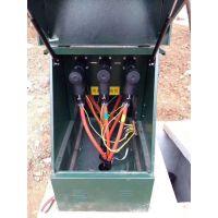 昌西电力 24KV高压电缆分支箱 一进一出二出带sf6开关免维护报价