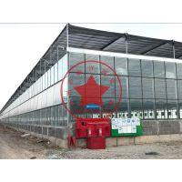 瀚洋钢结构智能连栋玻璃温室大棚—现代化蔬菜温室大棚