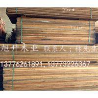 榄仁木 金丝柚木 卡斯楠 板材供应 板材价格 厂家直销 旭升木业