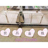 高培小猪保育床仔猪保育栏优质出售