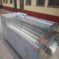 厂家直销1000型红薯清洗机 全自动红枣天麻马蹄清洗毛辊机