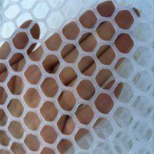 养殖塑料平网 养鸭踩踏网 耐用塑料网