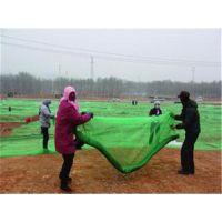 北京盖土网厂家直销