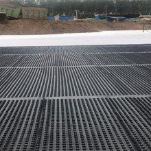 廊坊/承德/车库顶板HDPE阻根排水板/产地山东