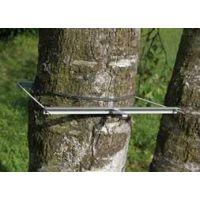 渠道科技 DD-L树干直径生长变化记录仪