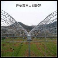 湖南批发大棚钢管热镀锌蔬菜大棚骨架保用15年